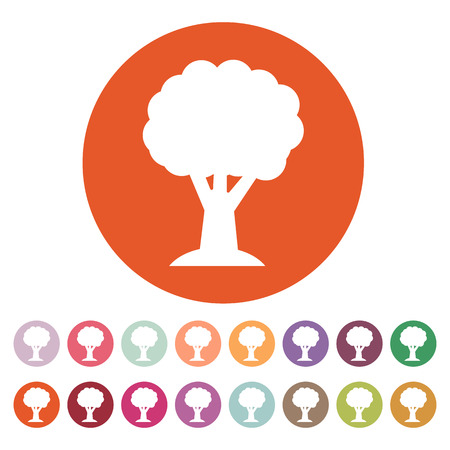 reforestaci�n: El icono del �rbol. S�mbolo de la naturaleza. Ilustraci�n vectorial Flat. Bot�n Set Vectores