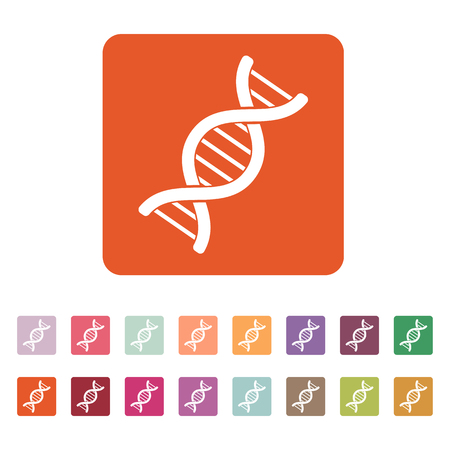chromosome: The dna icon. Genetics and medicine, molecule, chromosome,  biology symbol. Flat Vector illustration. Button Set