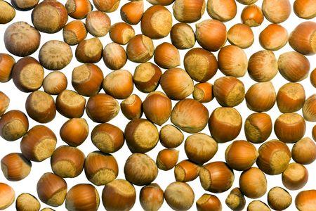 Many hazel nuts isolated on white background Standard-Bild