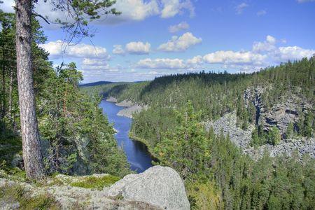 Panorama of beautiful forest, Karelia, Northen Russia Standard-Bild