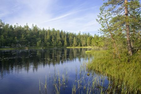 Early morning at forest lake, Karelia, northen Russia Standard-Bild