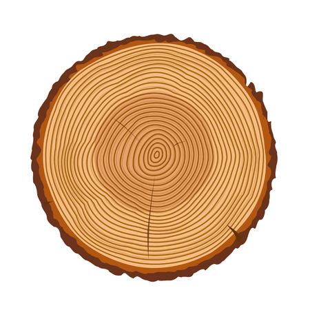 Boomringen, boomstam ringen geïsoleerd, hout ring textuur, boomringen vector illustratie, houten ringen pictogram met scheuren en barsten, gebarsten ringen van een boom ontwerp