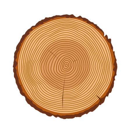 Tree rings, tree trunk rings isolated, wood ring texture, tree rings vector illustration, wooden rings icon with splits and cracks, cracked rings of a tree design Ilustracja