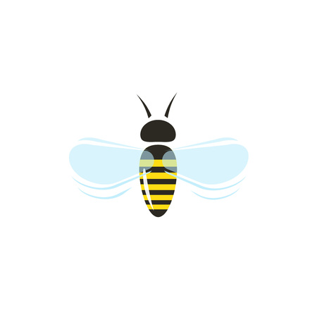 apis: Bee flying vector icon isolated on white background, flat cartoon honeybee