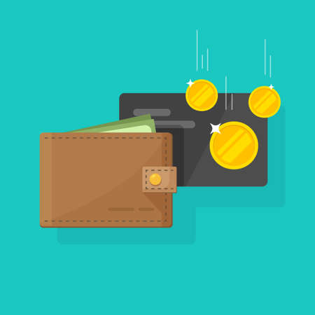 Leather wallet with money and credit card cash income vector, concept of earnings, success transactions flat cartoon modern design image 일러스트