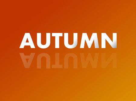 mirror reflection: The word AUTUMN in mirror reflection. Vector illustration. Eps 10