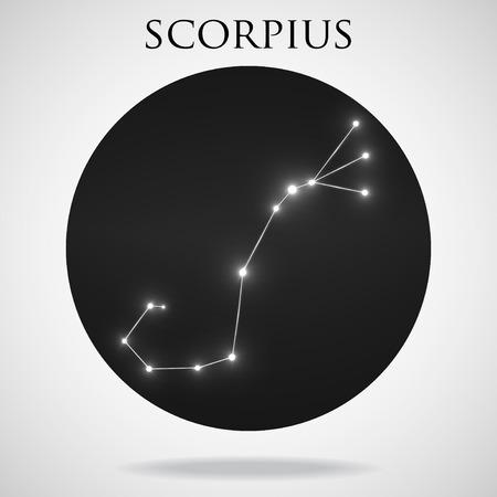 interoperability: Constellation scorpius zodiac sign isolated on white background, vector illustration Illustration