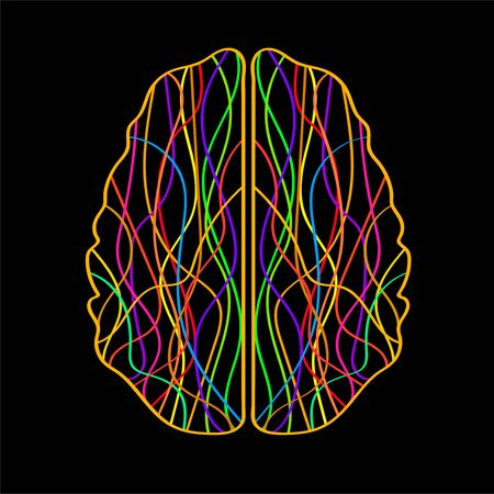 Abstract human brain of colorful stripes and lines. Vector illustration