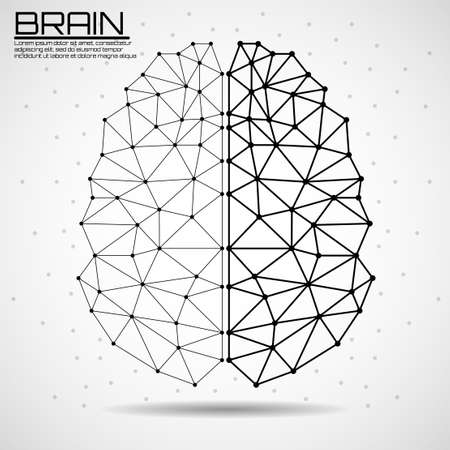 Abstract human brain of lines and dots, polygonal wireframe. Vector illustration