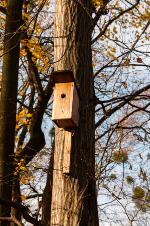 Small wooden bird house on the tree, between yellow leaves and branches