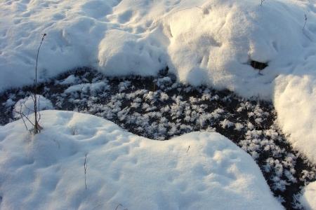 zimní krajina, zmrazené jezero, detail