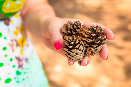 pine three: Girl holding three small pine cones