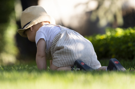 Baby boy crawls on the grass  watching flowers in the garden on beautiful spring day Stock Photo