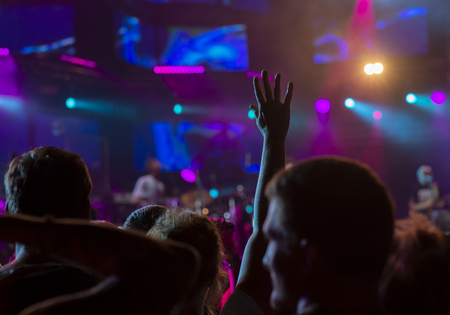 Cheering crowd at a rock concert Imagens
