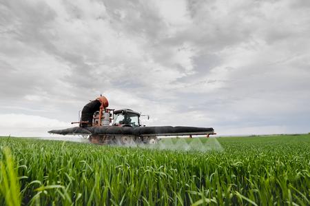 Tractor spraying wheat in springtime in field Reklamní fotografie