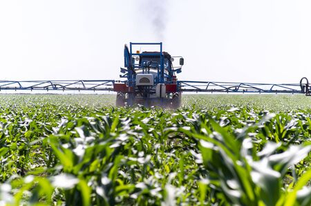 Tractor spray fertilize field with insecticide herbicide chemicals in agriculture field Stok Fotoğraf
