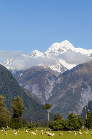 Southern Alps Landscapes. Mount Cook. South island new zealand Stock Photo