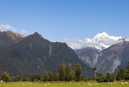 Southern Alps. Two mount on one shoot. Mount Cook and mount Tasman. South island new zealand