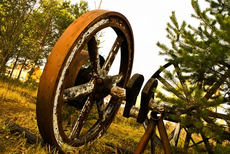 Old wooden wheel standing with grass & trees background photo