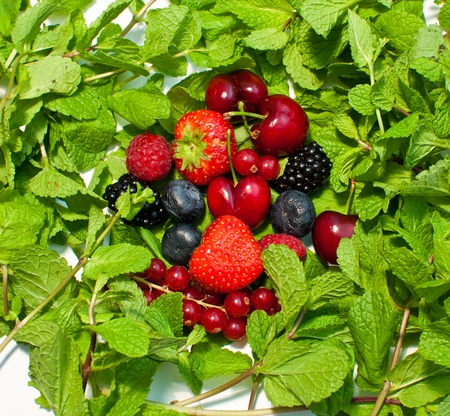 a lot of different berries and green leaves photo