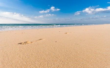 sun s: sandy beach with lots of footprints and a blue sky with clouds