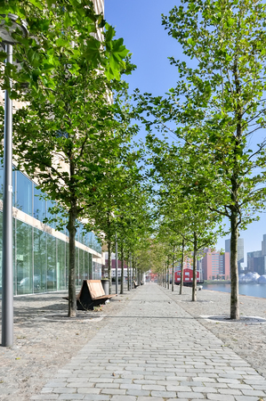 paved: paved pedestrian promenade on Maas river in Rotterdam Netherlands Holland