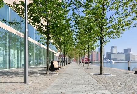 maas: paved pedestrian promenade on Maas river in Rotterdam Netherlands Holland