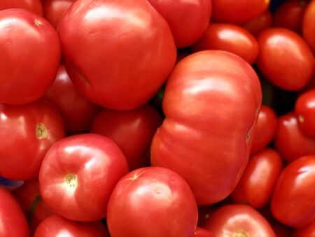 Raw vegetables: red tomatoes Standard-Bild