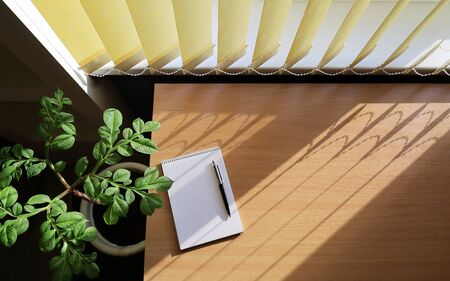 On the surface of the table near the window there are bright beautiful shadows from the blinds. Nearby is a houseplant. Top view of the workspace Stockfoto