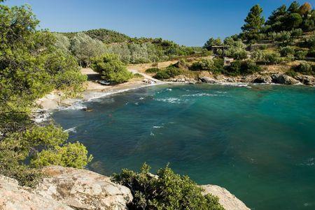 pine creek: Spathies beach, Halkidiki, Greece
