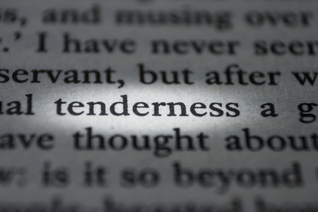 macro photograph of the word tenderness - concept