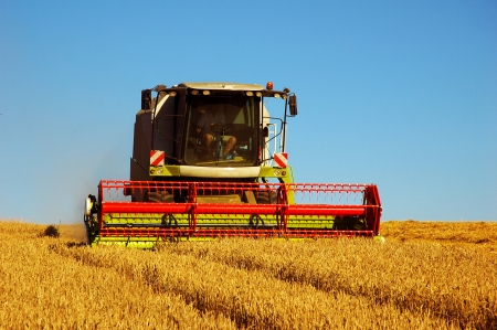 Combine harvester at work harvesting a field of wheat photo