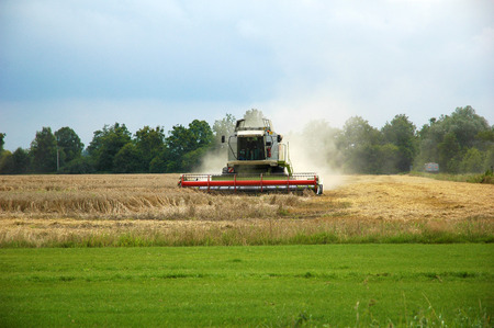 Combine harvester at work harvesting a field of wheat. photo