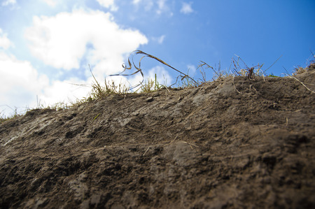 Cross section of earth with grass - closeup, frog view, cloudy sky behind. photo
