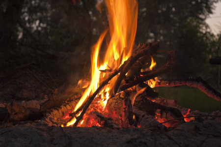 Camp fire in garden. photo