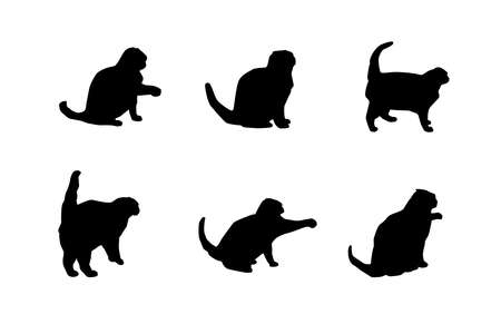 Silhouette of a cat on a white background. Vector illustration.