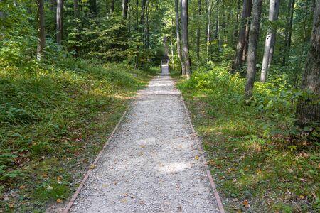 Sendero largo y sinuoso en un parque forestal