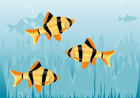 ocean floor: Aquarium with orange fishes. Illustration