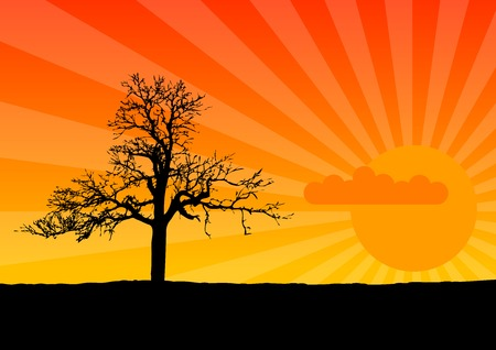 Black silhouette of tree by sunset. Stock Vector - 6012041