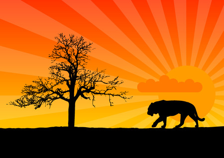 Black silhouette of tiger on african desert. Stock Vector - 6142576