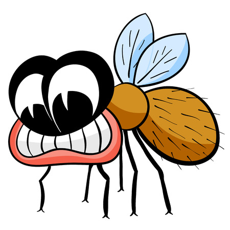 Drawing fly isolated on the white. Vector