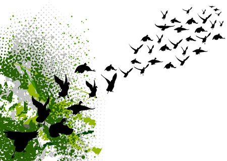 migration: flying black silhouettes of birds