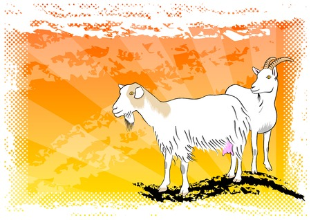 goat on the abstract orange background Vector