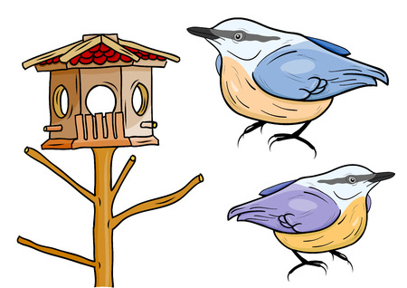 cartoon birds: cartoon birds with bird box Illustration