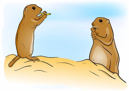 Prairie dogs on the sand Stock Vector - 7755780