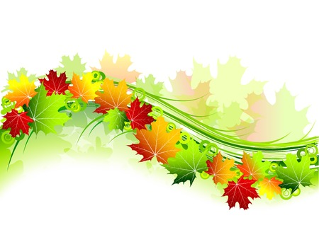autumn theme on the white Vector