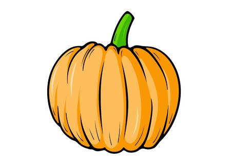 Pumpkin isolated on the white Vector