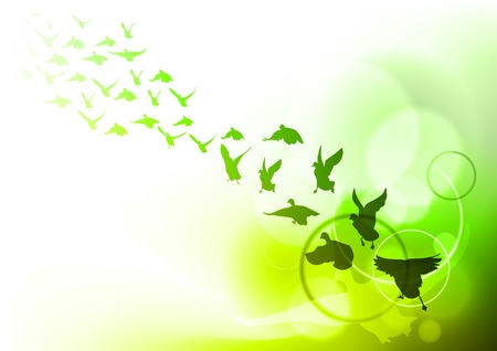 birds on the green background Vector