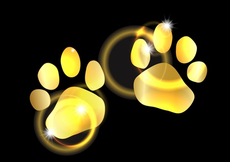 golden animal feet on the dark Vector