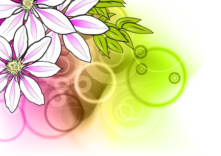 flower on the abstract background Vector